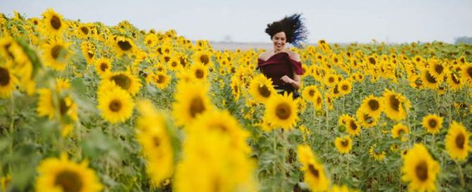 things to do in le marche sunflowers field