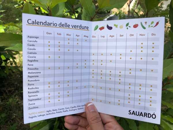 season vegetables calendar