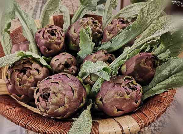 slow food artichoke