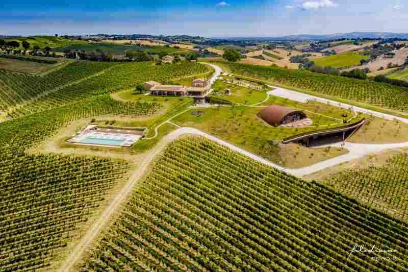 Filodivino vineyard hotel marche italy