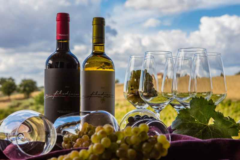 winery le marche italy